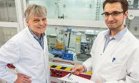 Zelleigene Protein-Schredder zum Kampf gegen Krebs